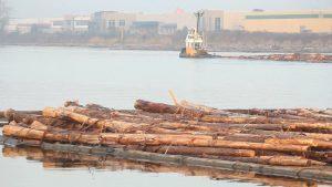 fraser-river-log-booms